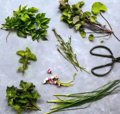 Ätliga blommor, ogräs, blad och skott