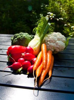 Snabbsyrade grönsaker