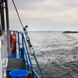 Löjromsfiske - Spiken