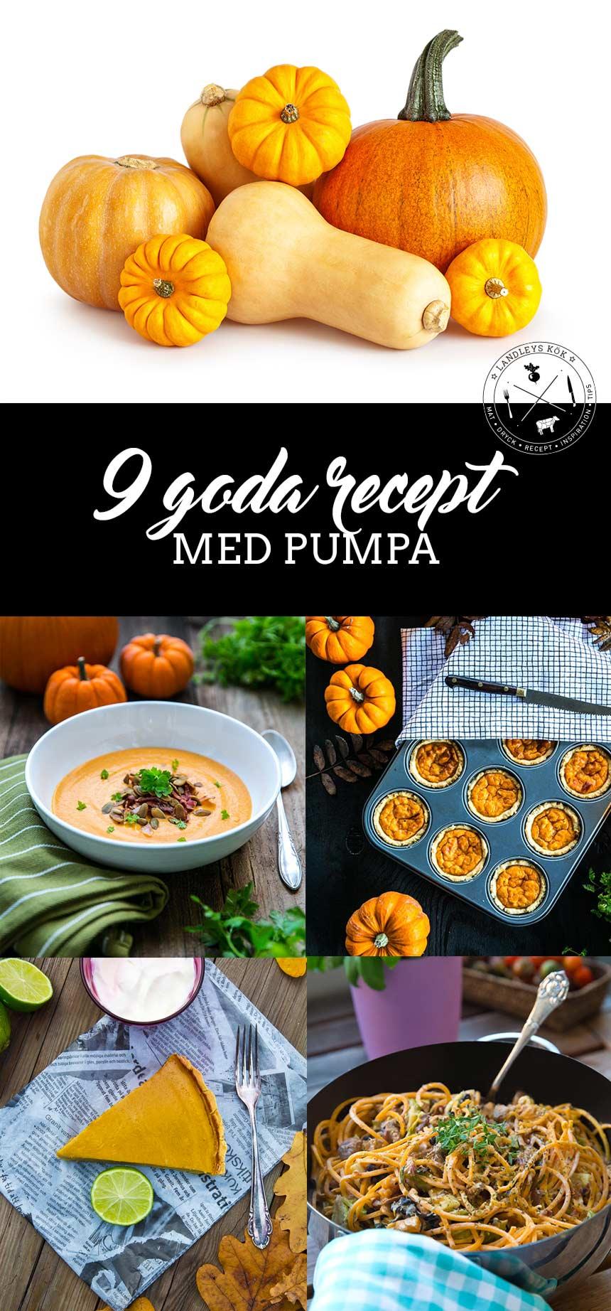 Allt du vill veta om pumpa + 9 goda recept