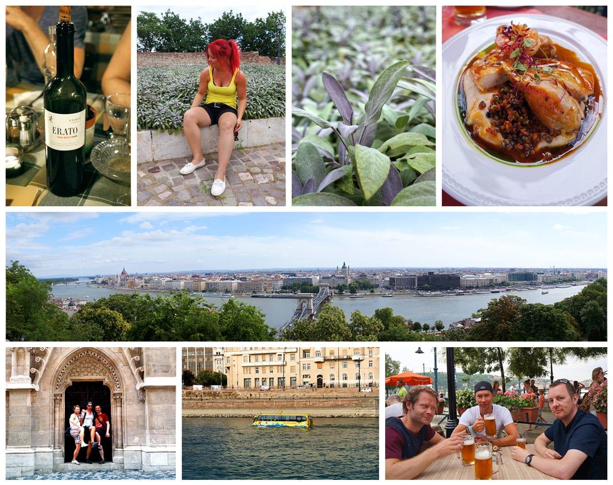 Ungern Stad Mat och Dryck