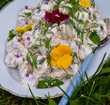 Potatissallad med dill och creme fraiche