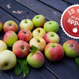 15 saker att göra med äpplen