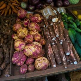 Marknad Havanna Kuba 2015