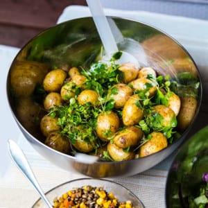 Grillade kycklingspett med potatissallad och grillad lime