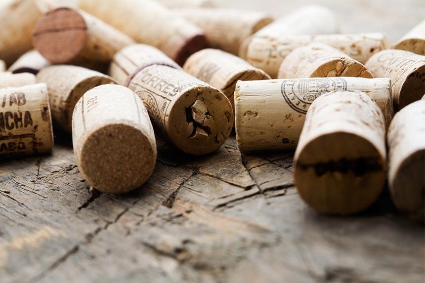 Allt du vill veta om vinprovning