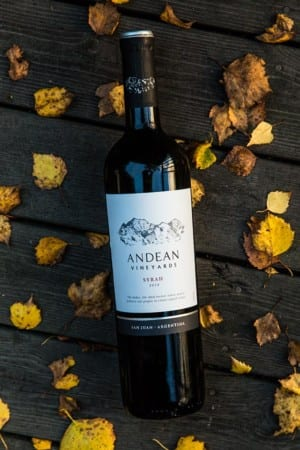 Andean Vineyards Syrah (6906)
