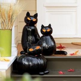 Cat o Lanterns