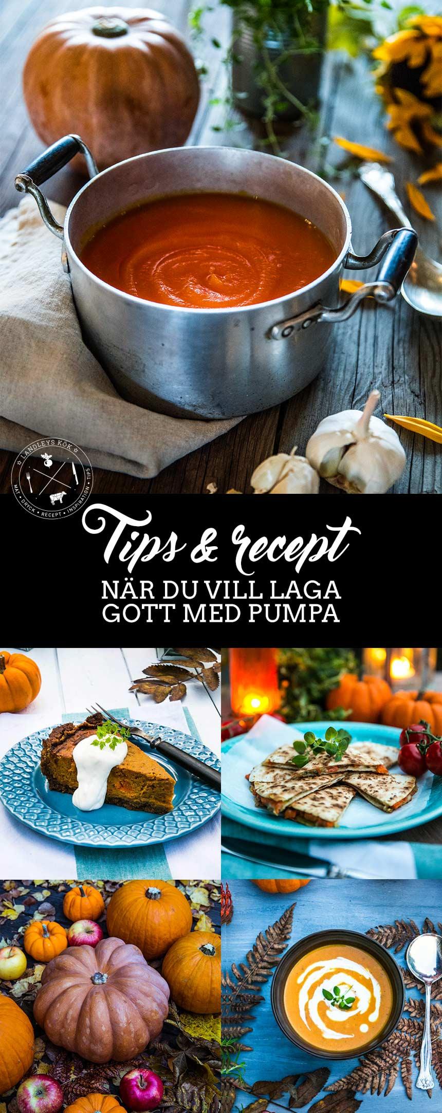 Tips och recept med pumpa