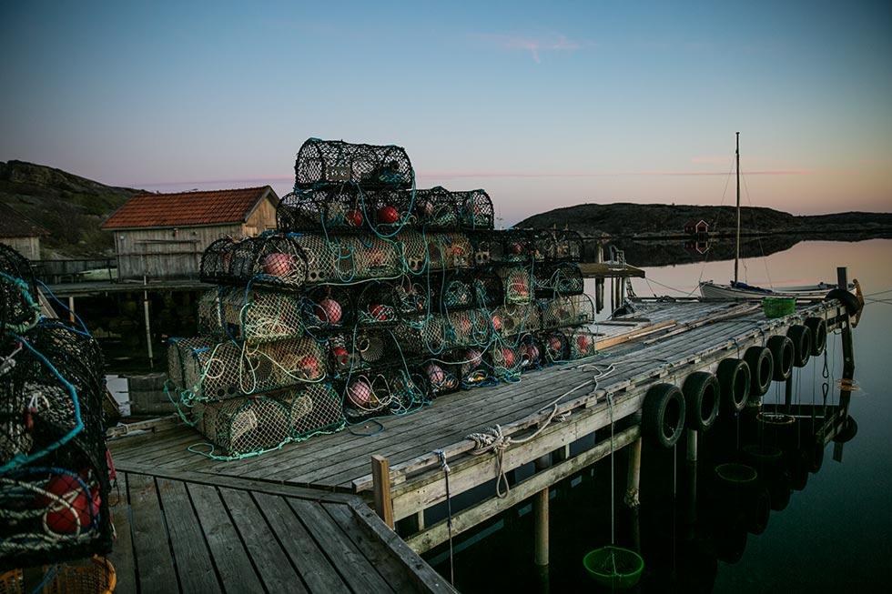 Världens bästa ostron kommer från Grebbestad - Landleys Kök 58f55828167bb