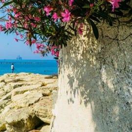 Stranden på Hotell The Royal Apollonia Beach Cypern 2018