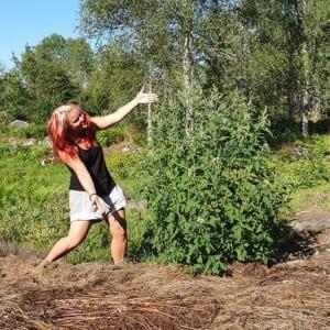 Madeleine Landley tipsar om ätligt ogräs