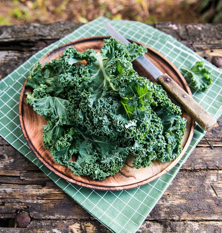 Bästa recepten med grönkål