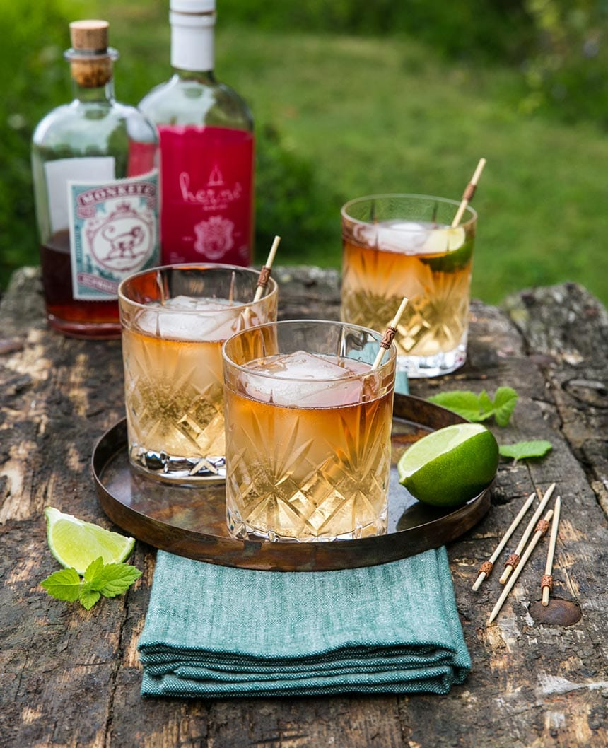 Sloe Gin med Ginger Ale